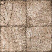 Керамическая плитка New Trend Ringwood Tik Brown 410х410