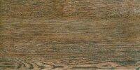 Керамическая плитка Gracia Ceramica Alania brown PG 01 400х200
