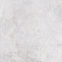Керамическая плитка Gracia Ceramica Olezia grey light PG 01 600х600