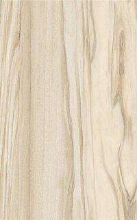 Керамическая плитка Paradyz Kwadro NEA Brown плитка настенная 25х40