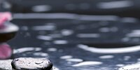 Керамическая плитка Нефрит-Керамика 04-01-1-10-04-04-162-2 Декор Болеро ОРХИДЕЯ 02 50х25