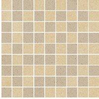 Керамическая плитка Paradyz ARKESIA Beige Brown Mix Poler Мозаика 30х30