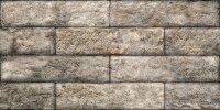 Керамическая плитка Керамин Зальцбург 3 30х60см