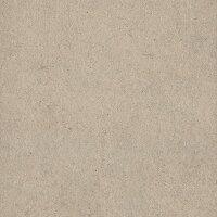 Керамическая плитка Italon 610010001318 Everstone Desert Ret 60x60