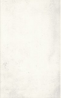 Керамическая плитка Paradyz Kwadro Muro Bianco плитка настенная 25х40