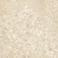 Керамическая плитка Lasselsberger Скольера светло-бежевый 45х45см (6046-0339)