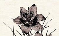 Керамическая плитка Нефрит-Керамика Декор Piano 1 цветок коричневый 25х40